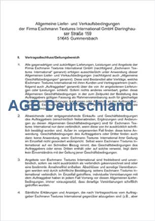 Terms and Conditions for Germany